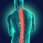 medisport_spine_pain_01